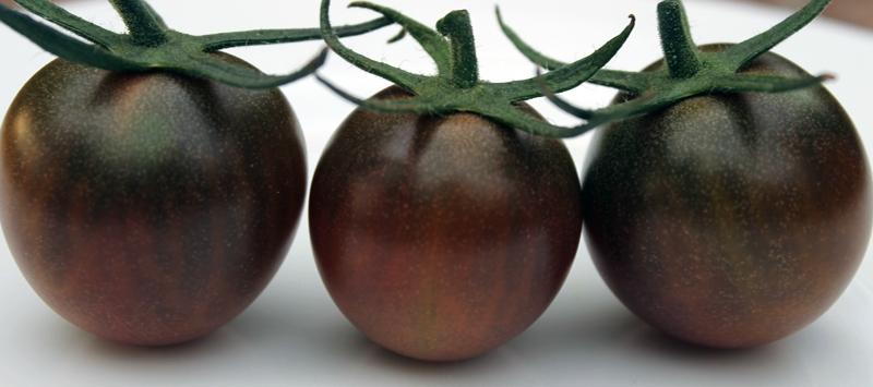 4 septembre conserves tomates cerises en bocaux st rilis s passion potager. Black Bedroom Furniture Sets. Home Design Ideas