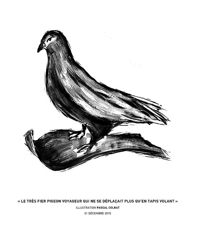 le tres fier pigeon qui ne se deplacait plus qu'en tapis volant