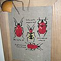 Broderie insectes
