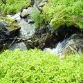 10-08-08 Grotfjord (88)
