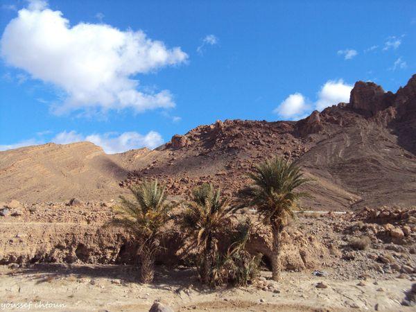 maroc__78_