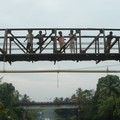 sur le pont (d'Avignon)