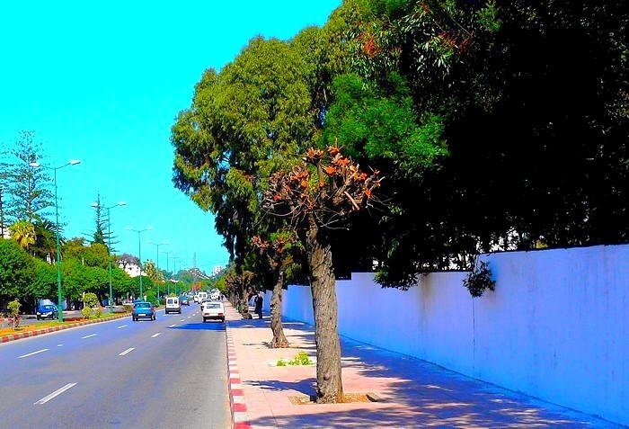 Artére de Rabat