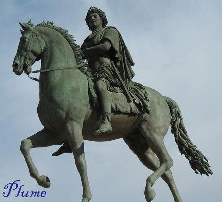 Plume_cheval_Louis_XIV