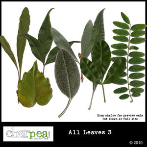 cpd_allleaves_review600_01
