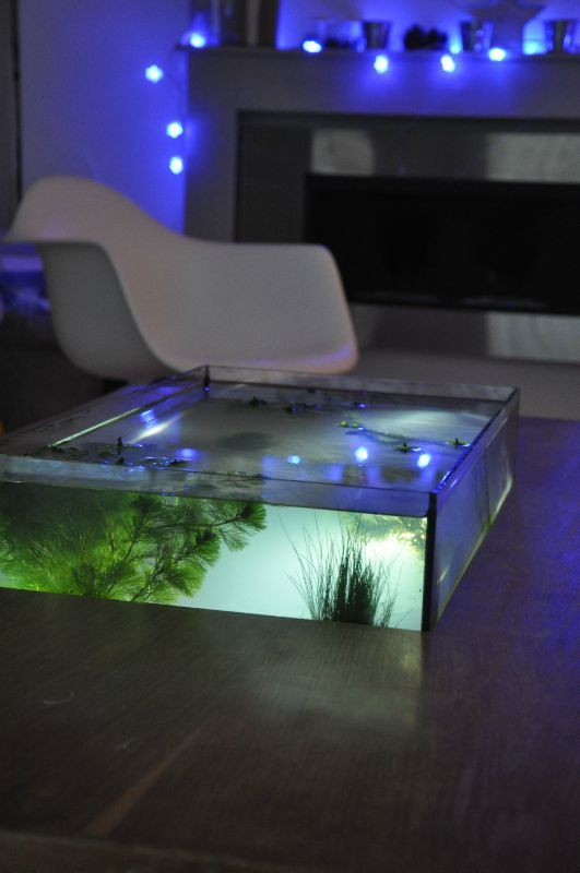 table basse aquarium zolux. Black Bedroom Furniture Sets. Home Design Ideas