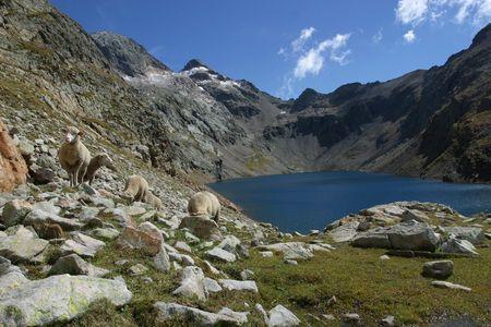 Lac_Vallon_1