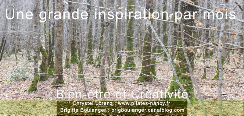 inspiration forêt copie