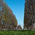 Paris bourgeonne (sous l'œil du fuji x10)