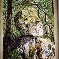 cette pierre bouge et représente un visage vue en Creuse