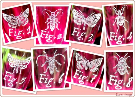 flut1