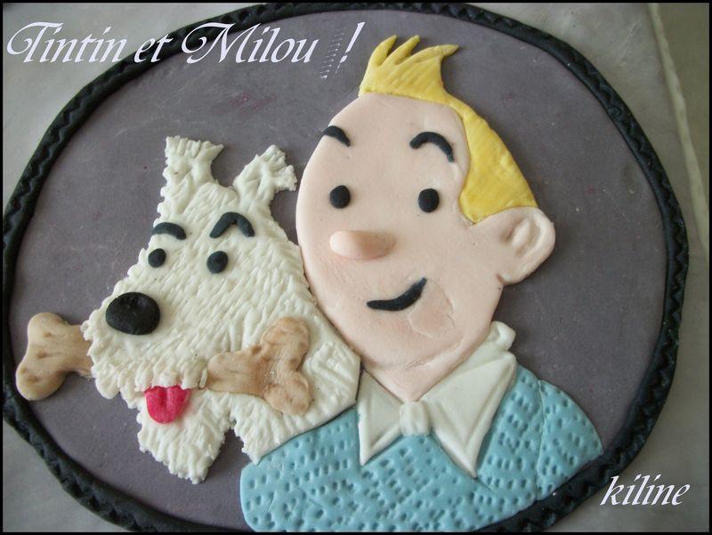 Decoration En Chocolat Pour Gateau : Tintin et milou voilà me revoilà ma petite
