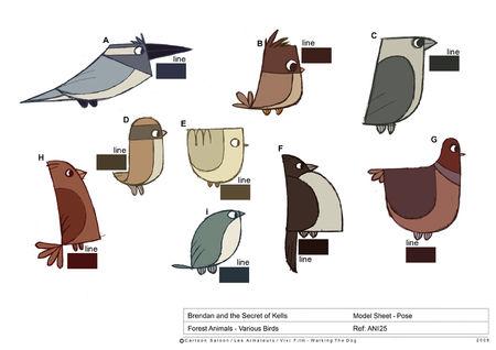 ANI25_various_birds_colour