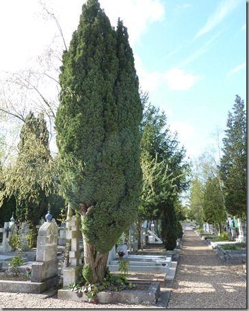 Cimetière Russe-16.04.2012 060