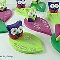 marques places hiboux vert rose violet 2