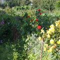 jardins ouvriers 009