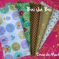 BAI JIA BEI - 201001-010 envoi de Mouty 1