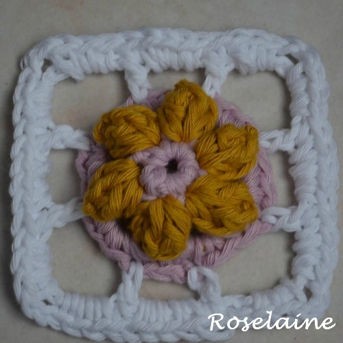 Roselaine spring lane indice 7 a
