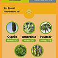 Une application d'alertes polliniques pour mieux vivre vos allergies
