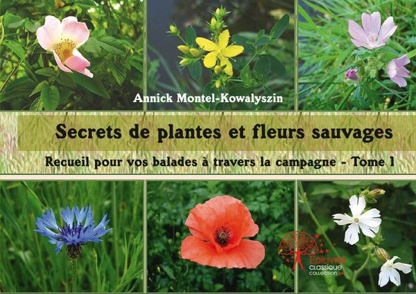 Secrets-de-Plantes