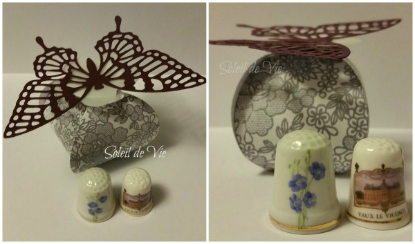 2015-papillontoutsimplement-stampin'up-soleildevie