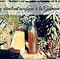 Aprés shampoing home made guimauve-bruyère