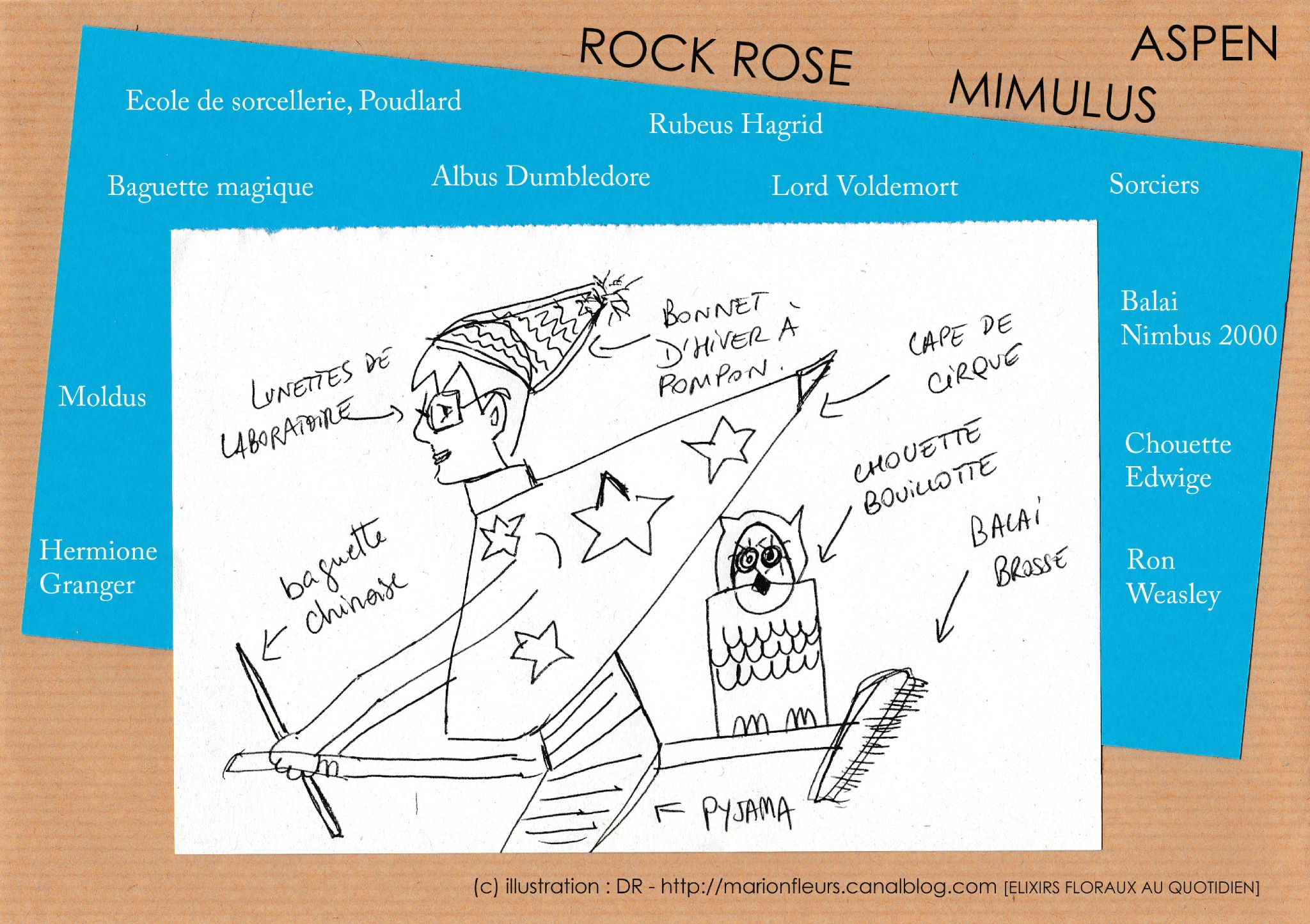 Harry Potter et les mondes invisibles / Tanis Helliwell / Fleurs de Bach : ASPEN, Rock Rose, White Chestnut