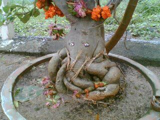 ganesh_tree