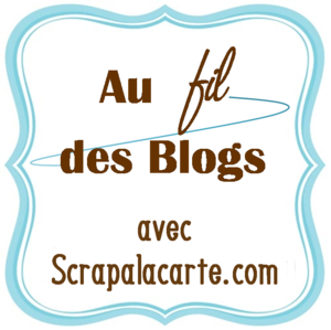 au_fil_des_blogs