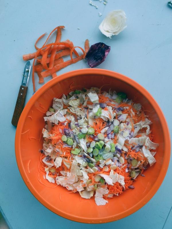 salade coleslaw 2