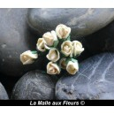 boutons rose ivoire 4mm