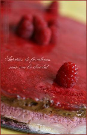 supr_me_de_framboises_sous_son_lit_chocolat