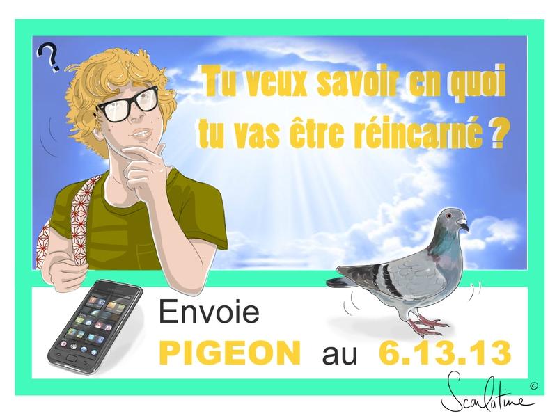 1 PIGEON