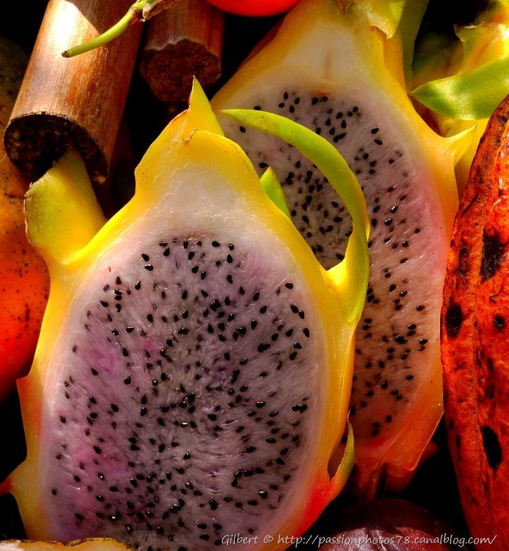 Fruits exotiques (11)