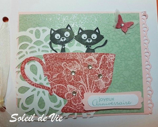 201703-soleildevie-stampin'up-petitebouledepoils-600