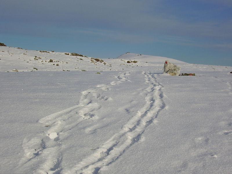 04-10-08 Tromsdalstind et neige (82)