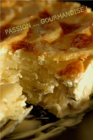 Gratin_p_de_t_poireau_cinq__pices_4