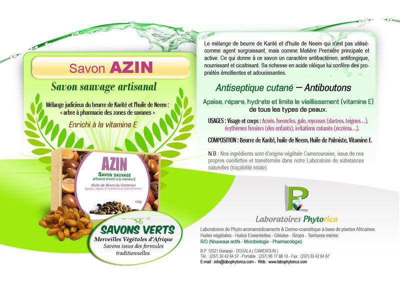 Design_Azin mod