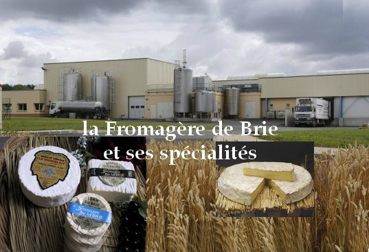 _Ste Fromagere de Brie