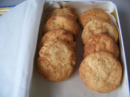 biscuits_cannelle_1