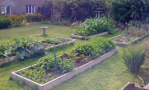 Kitchen garden le cottage de gwladys for Idee carre potager