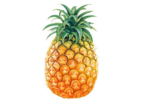 Tasty_Pineapple