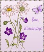 BonDimanche-6