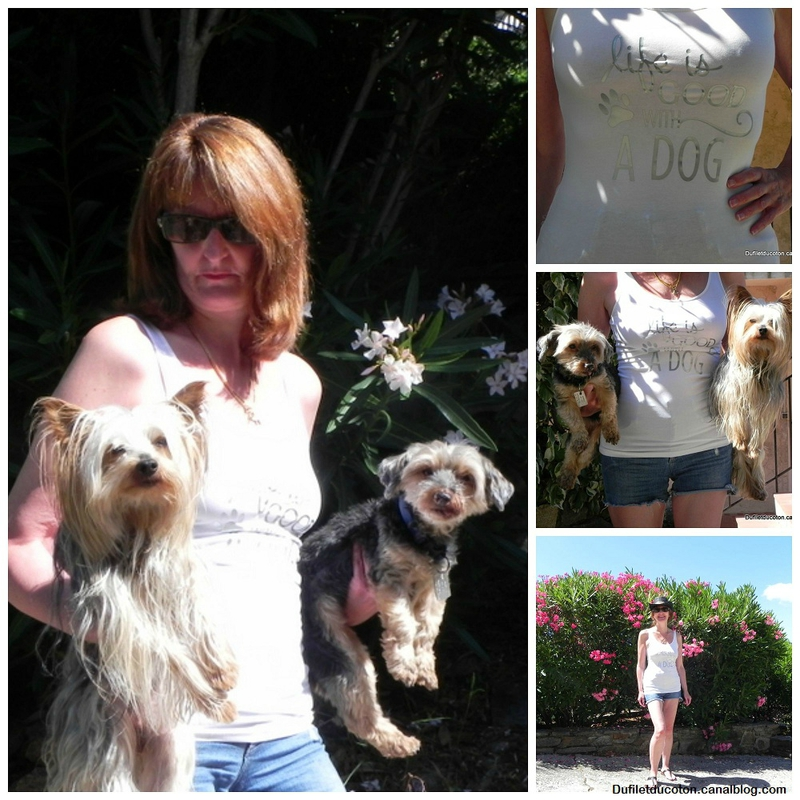 Collage Life is good with dog