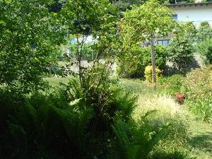 giardino_dalla_casa