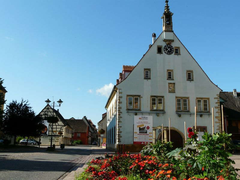 Ingersheim (5)