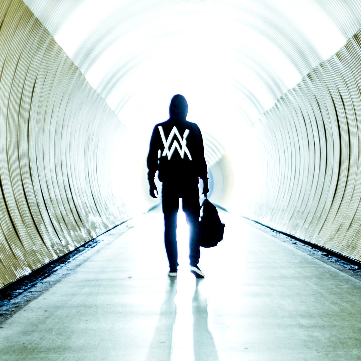Faded - Alan Walker (feat. Iselin Solheim) (2015)