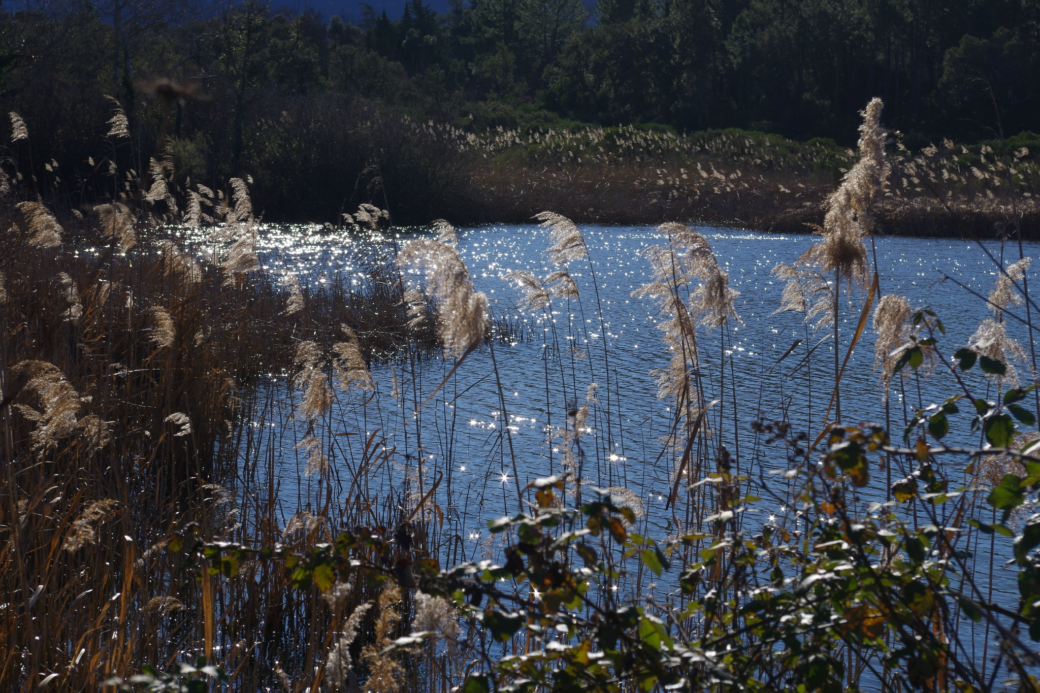 Objectif Kili : Rando 1, le lac des Escarcets