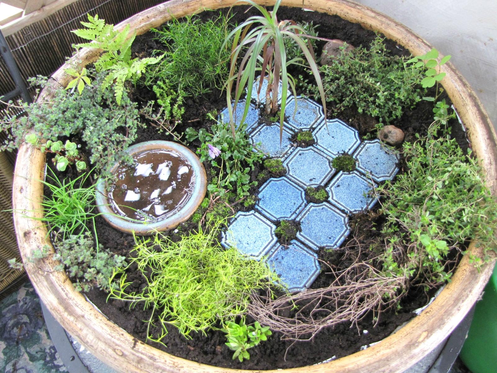Jardin miniature la clef des songes - J ai trouve un herisson dans mon jardin que faire ...