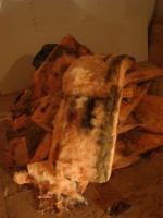moississures sur laine minérale